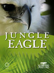 Nature: Jungle Eagle