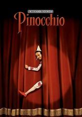 Rent Pinocchio (Italian - language version) on DVD