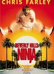 Beverly Hills Ninja (1997) Box Art