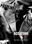 Accatone poster