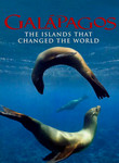 Galapagos in 3D poster