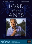 Naturalist E.O. Wilson: Lord of the Ants